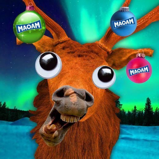 M023 Maoam Reindeer FACEBOOK