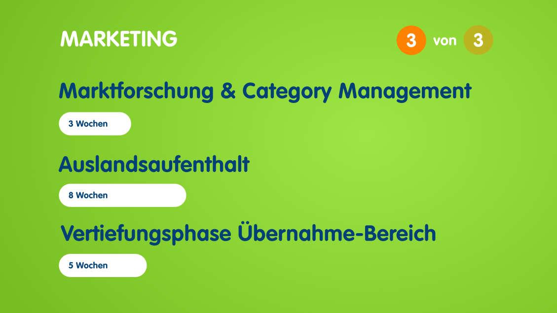 Infografik zum Aufbau des Traineeprogramms im Marketing