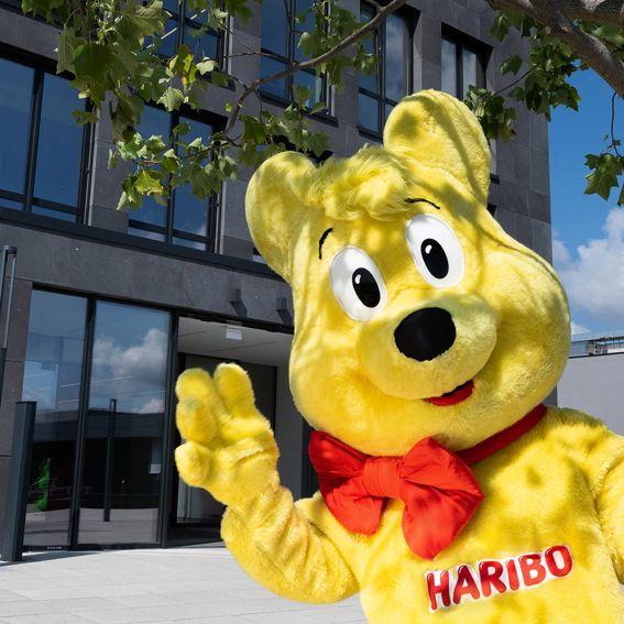 Big Goldbear in front of the headquarter in Grafschaft