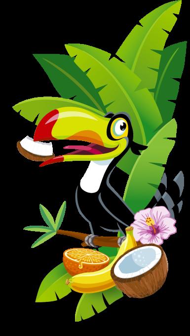 Illu Tropi Kokos2